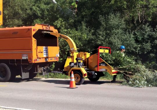 Commercial Tree Services-Doral FL Tree Trimming and Stump Grinding Services-We Offer Tree Trimming Services, Tree Removal, Tree Pruning, Tree Cutting, Residential and Commercial Tree Trimming Services, Storm Damage, Emergency Tree Removal, Land Clearing, Tree Companies, Tree Care Service, Stump Grinding, and we're the Best Tree Trimming Company Near You Guaranteed!