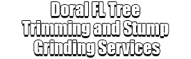 Doral FL Tree Trimming and Stump Grinding Services Logo-We Offer Tree Trimming Services, Tree Removal, Tree Pruning, Tree Cutting, Residential and Commercial Tree Trimming Services, Storm Damage, Emergency Tree Removal, Land Clearing, Tree Companies, Tree Care Service, Stump Grinding, and we're the Best Tree Trimming Company Near You Guaranteed!